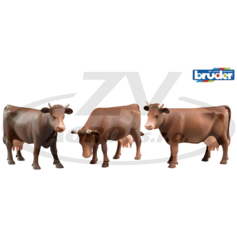 Kráva hnědá - S různým držením hlavy