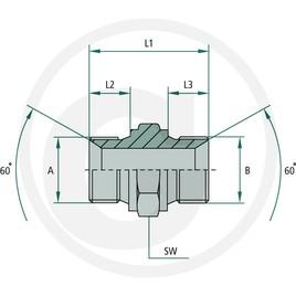 GA 1/4 M-BSP x 1/4 M-BSP